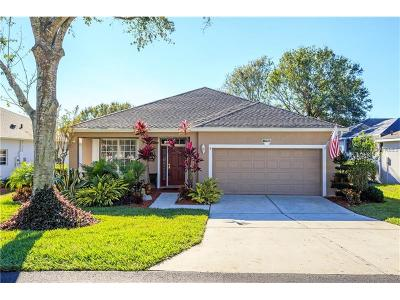 Clermont Single Family Home For Sale: 3750 Hasting Lane