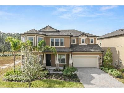 Orlando Single Family Home For Sale: 9289 Royal Estates Boulevard
