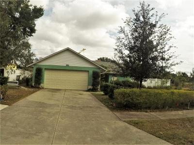 Mount Dora Single Family Home For Sale: 180 Stanley Bell Drive