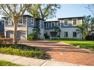Orlando Single Family Home For Sale: 1317 Spring Lake Drive