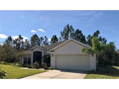 Daytona, Daytona Beach, Daytona Beach Shores, De Leon Springs, Flagler Beach Single Family Home For Sale: 117 McGill Circle