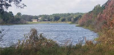 Seminole County, Volusia County Residential Lots & Land For Sale: 385 Mommas Wayout