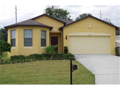 Mount Dora Single Family Home For Sale: 30113 Losino Cove
