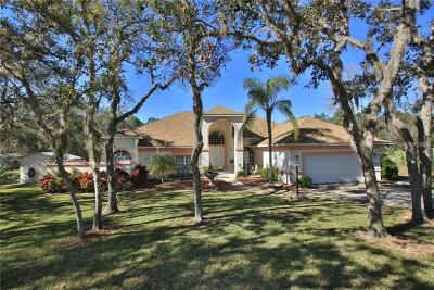 New Smyrna Beach Single Family Home For Sale: 3065 Turnbull Bay Road