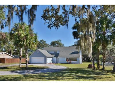 Leesburg Single Family Home For Sale: 35342 Radio Road