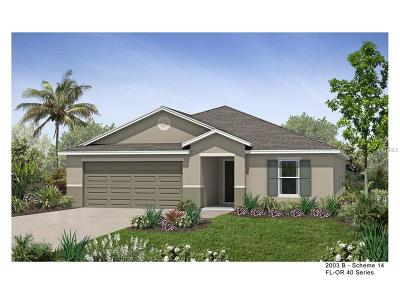 Orlando Single Family Home For Sale: 12073 Sumter Drive