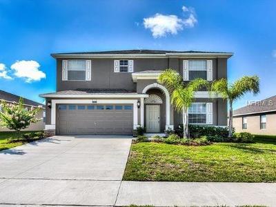Mount Dora Single Family Home For Sale: 4828 Havilland Drive #2