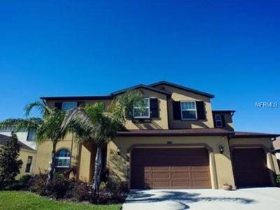 Wesley Chapel Single Family Home For Sale: 2589 Gwynhurst Boulevard