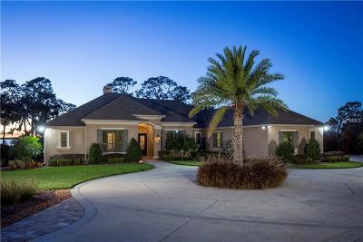 Mount Dora FL Single Family Home For Sale: $1,026,000