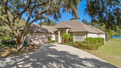 Fruitland Park Single Family Home For Sale: 910 Hawk Lndg