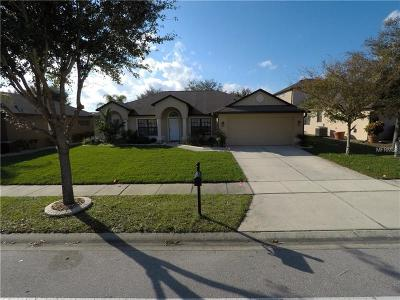 Orange City  Single Family Home For Sale: 1053 Natural Oaks Drive