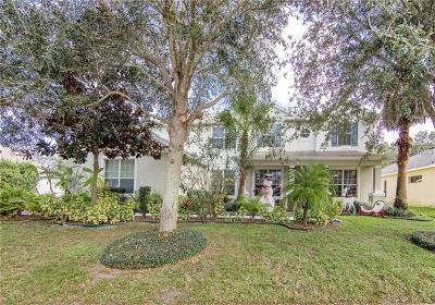 Apopka Single Family Home For Sale: 2249 Home Again Road