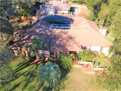 Apopka Single Family Home For Sale: 1541 Islay Court