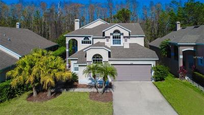 Stoneybrook Single Family Home For Sale: 2324 Dryburgh Ct
