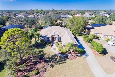 Debary Single Family Home For Sale: 257 Eagle Estates Drive