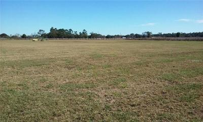 Lake County, Seminole County, Volusia County Residential Lots & Land For Sale: 6310 Millstream Drive