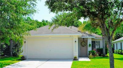 Tampa Single Family Home For Sale: 18115 Portside Street