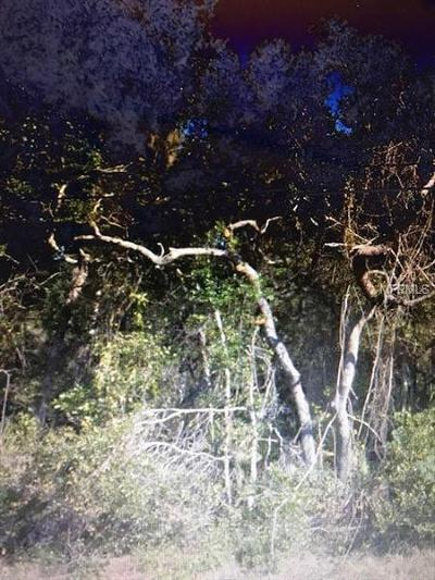 Lake County, Seminole County, Volusia County Residential Lots & Land For Sale: 5075 Fairport Avenue