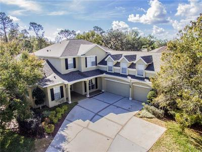 Sanford Single Family Home For Sale: 385 Meadow Beauty Terrace