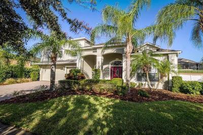 Mount Dora Single Family Home For Sale: 6001 Tremayne Drive