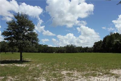 Polk City Residential Lots & Land For Sale: 5274 Demille Road