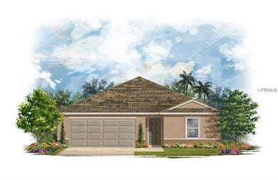 Mulberry Single Family Home For Sale: 4387 Moon Shadow Loop