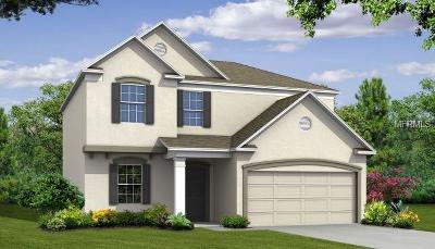 Fruitland Park Single Family Home For Sale: 807 Glen Creek Court