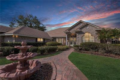 Lake Mary Single Family Home For Sale: 270 Snowfields Run
