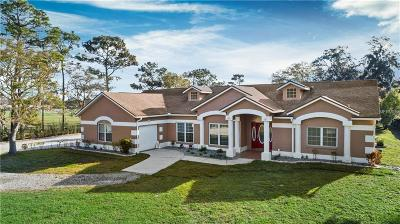 Orlando Single Family Home For Sale: 3555 S Chickasaw Trail