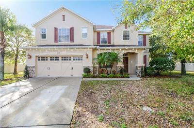 Mount Dora, Mt Dora, Mt. Dora Single Family Home For Sale: 30101 Jutland Court