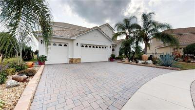 Kissimmee Single Family Home For Sale: 2380 Eagle Talon Court