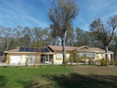 New Smyrna Beach Single Family Home For Sale: 2561 Glen Drive
