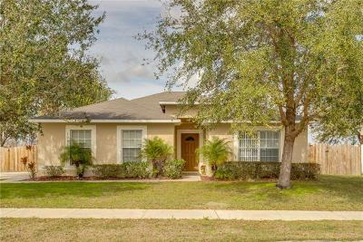 Groveland Single Family Home For Sale: 1053 Tawny Eagle Drive