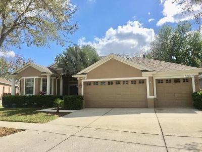 Wesley Chapel Single Family Home For Sale: 27907 Summer Place Drive