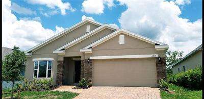 Leesburg Single Family Home For Sale: 26018 Meadow Breeze Lane