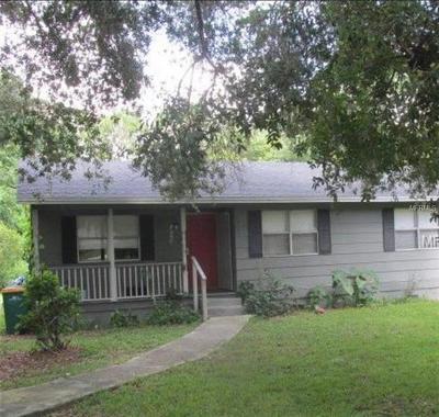 Mount Dora Single Family Home For Sale: 1926 N Orange Street