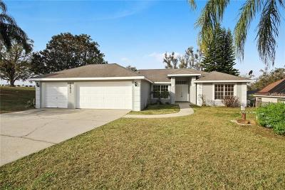 Clermont Single Family Home For Sale: 14611 Green Valley Boulevard