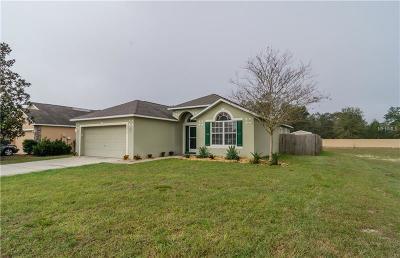 Deland Single Family Home For Sale: 3450 Arabesque Drive