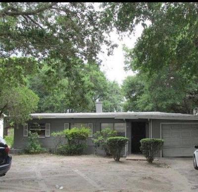 Mount Dora Single Family Home For Sale: 1339 E Jackson Avenue