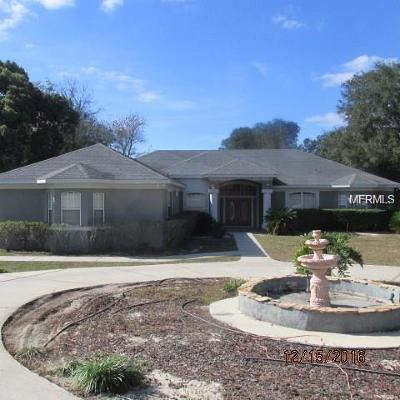 Mount Dora Single Family Home For Sale: 5550 Cemetary Road