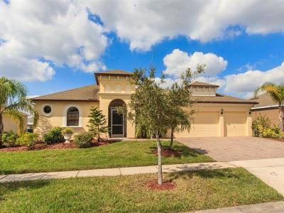 Kissimmee Single Family Home For Sale: 3004 Boat Lift Road