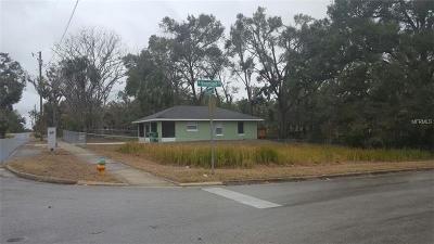 Deland Single Family Home For Sale: 643 S Adelle Avenue