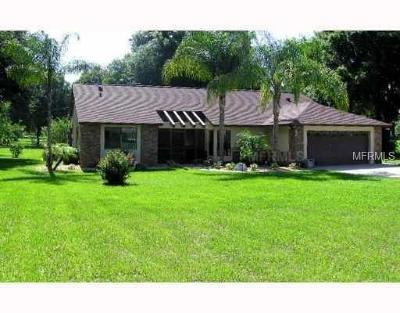 Apopka Single Family Home For Sale: 685 S Binion Road