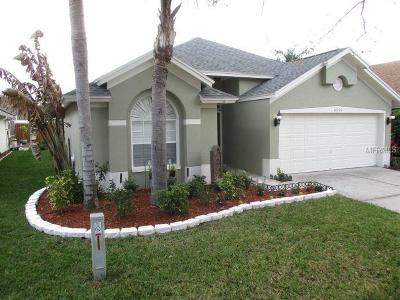 Tampa Single Family Home For Sale: 10255 Oasis Palm Drive