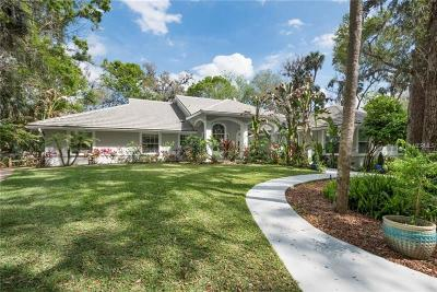 Volusia County Single Family Home For Sale: 1951 Waterford Estates Drive