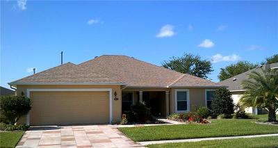 Leesburg Single Family Home For Sale: 26620 Augusta Springs Circle