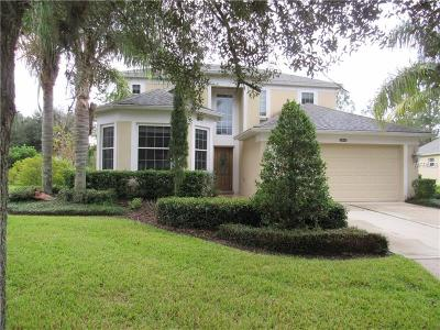 Mount Dora Single Family Home For Sale: 5848 Ansley Way