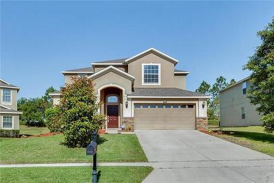 Mount Dora Single Family Home For Sale: 4716 Coppola Drive
