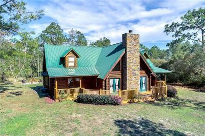 Eustis Single Family Home For Sale: 41124 Poinciana Street