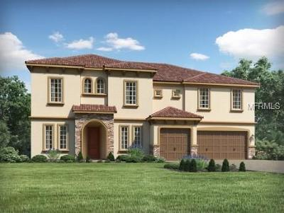 Bradenton Single Family Home For Sale: 13517 Saw Palm Creek Trail
